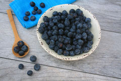 Blue berries in white bowl Royalty Free Stock Photography