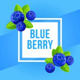 Blue berry concept background, cartoon style. Blue berry concept background. Cartoon illustration of blue berry vector concept background for web design royalty free illustration