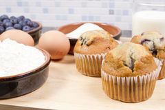 Blue berry muffins Stock Photos