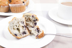 Blue berry muffins Stock Photo