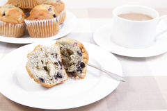 Blue berry muffins Royalty Free Stock Photos