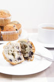 Blue berry muffins Stock Image