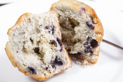 Blue berry muffins Royalty Free Stock Photography