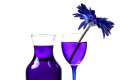 Blue-berry party drink Royalty Free Stock Image