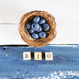 Blue berry photo Royalty Free Stock Image