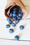 Blue berry photo Royalty Free Stock Photography