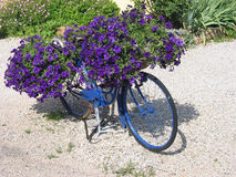 Blue bicycle Royalty Free Stock Photography