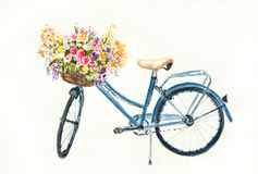 Blue bicycle with flowers in basket on white background. Retro blue bicycle with flowers in basket on white background, watercolor illustrator , hand painted vector illustration