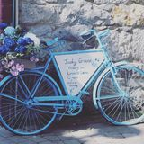 Blue bicycle with flowers. Pretty and uplifting Stock Photos