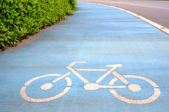 Blue Bicycle Lane. Only and park outdoor Royalty Free Stock Image