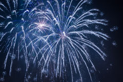 Blue big fireworks during the celebrations Royalty Free Stock Image