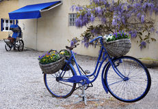 The blue bike Royalty Free Stock Photo