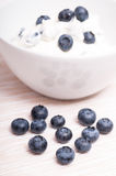 Blue bilberries in front of a white bowl Royalty Free Stock Images