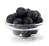 Blue bilberry or whortleberry Royalty Free Stock Photos