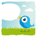 Blue bird. Tweets in the grass Royalty Free Stock Photos