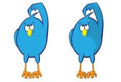 Blue bird. Thoughtful blue bird (shading variation Stock Photos