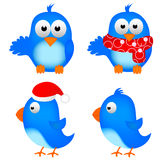 Blue Bird. Cute blue bird white background illustration Royalty Free Stock Photos