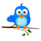 Blue bird. Cute blue bird white background illustration Royalty Free Stock Photography