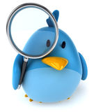 Blue bird. Fun blue bird, 3d generated picture Royalty Free Stock Photos