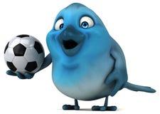Blue bird Stock Photography