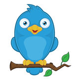 Blue Bird on Branch. Clipart Picture of a Blue Bird Cartoon Character on Branch Stock Photos