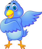Blue bird cartoon Royalty Free Stock Photo