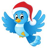 Blue bird in Christmas hat Stock Photography