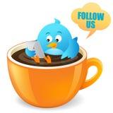 Blue Bird Coffee Break Royalty Free Stock Photos