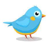 Blue bird so cute Royalty Free Stock Images
