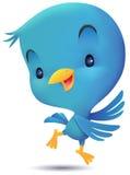 Blue Bird Dancing Stock Images