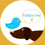 Blue bird on the dog nose with speech bubble follow me hashtag. Social media icon with blue bird and brown dog Stock Photography