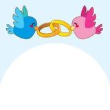 Blue Bird Engagement Rings Stock Image