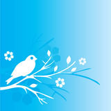 Blue bird and flowers Stock Image