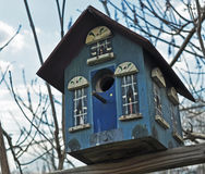 Blue Bird House Stock Photos
