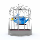 Blue bird inside the cage that chirps Stock Photography