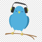 Blue bird listening to music. On transparent background Royalty Free Stock Images