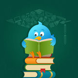 Blue Bird Reading Books. Concept Background Stock Photos
