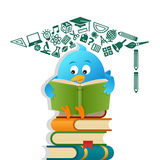 Blue Bird Reading Books Royalty Free Stock Image