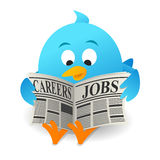 Blue bird Search Jobs. On white background Stock Photography