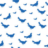 Blue Bird Silhouette Pattern with White Background. Vector illustration Royalty Free Stock Photo