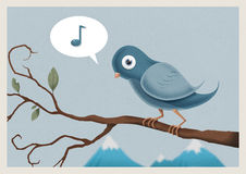 The Blue Bird. A blue bird singing, whilst sitting on a branch Royalty Free Stock Photography