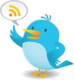 Blue Bird talk. Cartoon Illustration of Blue Bird talking Stock Images