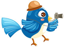 Blue bird travel Royalty Free Stock Photos