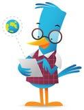 Blue Bird using tablet. Cartoon Blue Bird browsing using tablet Royalty Free Stock Image