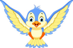 Blue bird will land Royalty Free Stock Photography