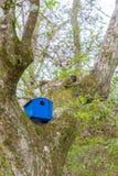 Blue Birdhouse in Tree Stock Image