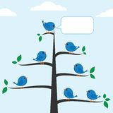 Blue birds Royalty Free Stock Images