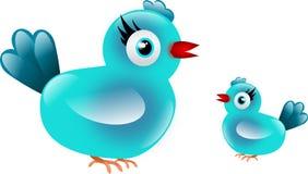 Blue birds Stock Image