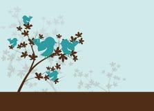 Blue birds on brown tree Royalty Free Stock Photos