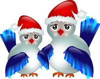 Blue birds with Santa's hat Stock Photography